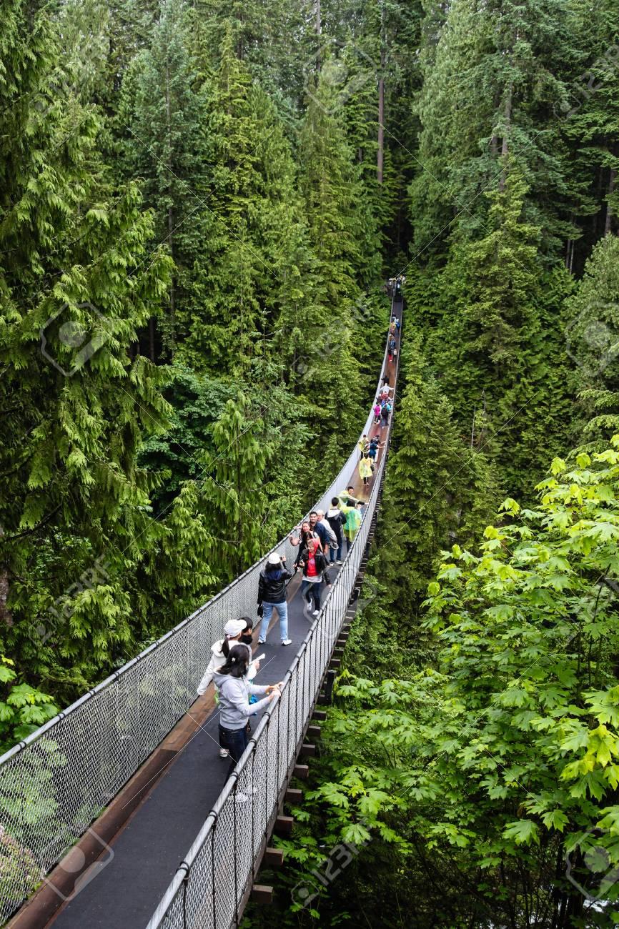 Los Visitantes Cruzan El Río Capilano En Un Puente Colgante En El Norte De  Vancouver En La Columbia Británica, Canadá. El Puente Colgante De Capilano  Es De 460 Pies De Largo Y