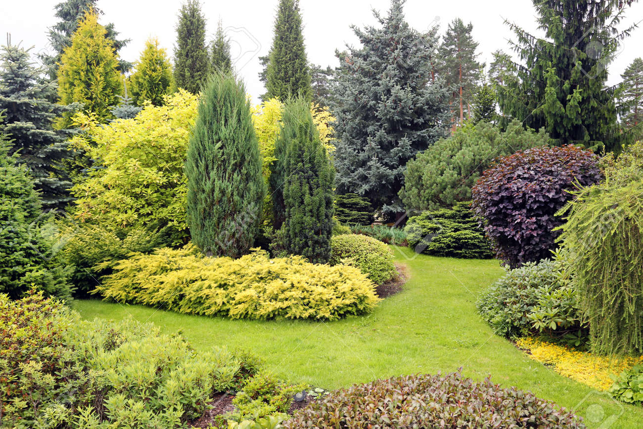 Picture Of Garden Landscape Landscape garden stock photos royalty free landscape garden images beautiful garden landscape with variety of conifers and other plants stock photo workwithnaturefo
