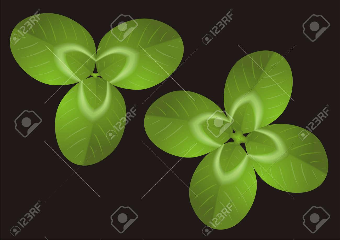 Green Clover Stock Vector - 12915446