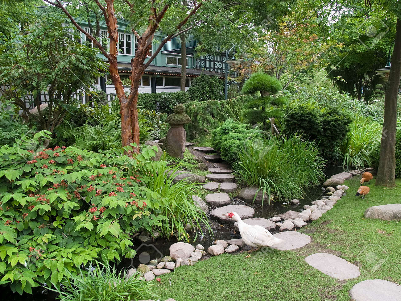 beautiful classical landscaped japanese garden with water stream