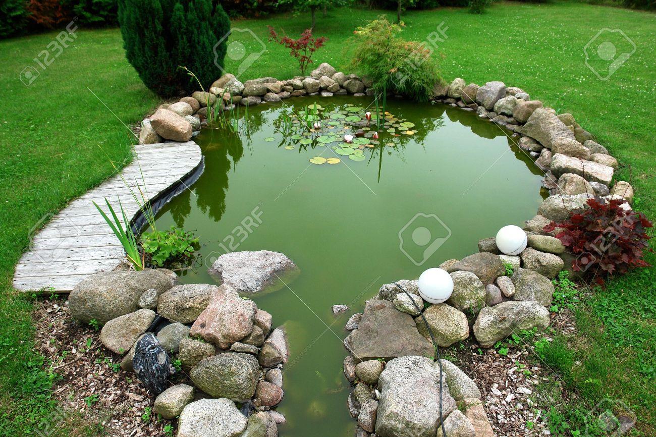 Beautiful classical design garden fish pond in a well cared backyard gardening background - 10021825