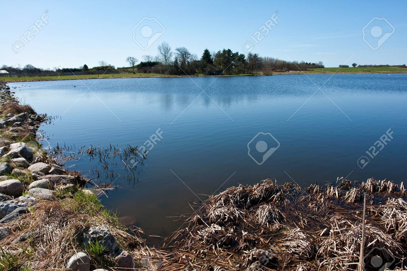 Beautiful blue water lake landscape in the summer Stock Photo - 10413023