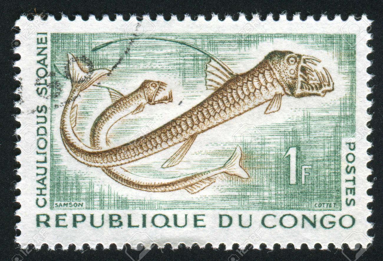 Sloane's viperfish by kyan-dog on DeviantArt