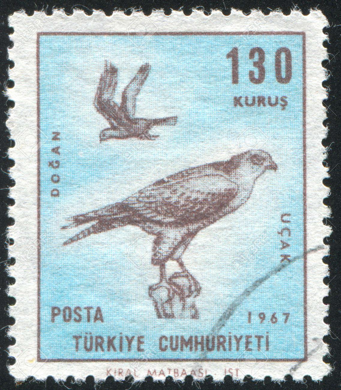 TURKEY- CIRCA 1967: stamp printed by Turkey, shows falcon, circa 1967 Stock Photo - 12999218