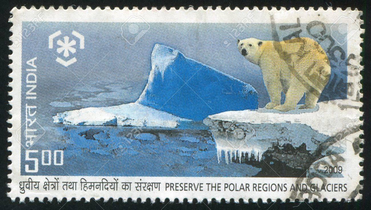 INDIA - CIRCA 2009: stamp printed by India, shows polar bear, circa 2009 Stock Photo - 15438958
