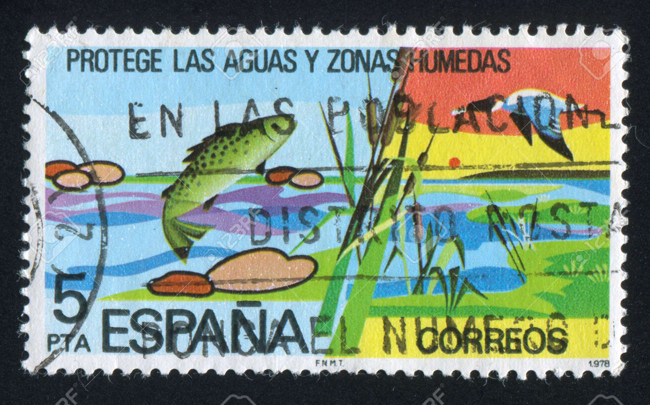 SPAIN - CIRCA 1978  : stamp printed by Spain, shows Pond, Cane, circa 1978 Stock Photo - 16223872