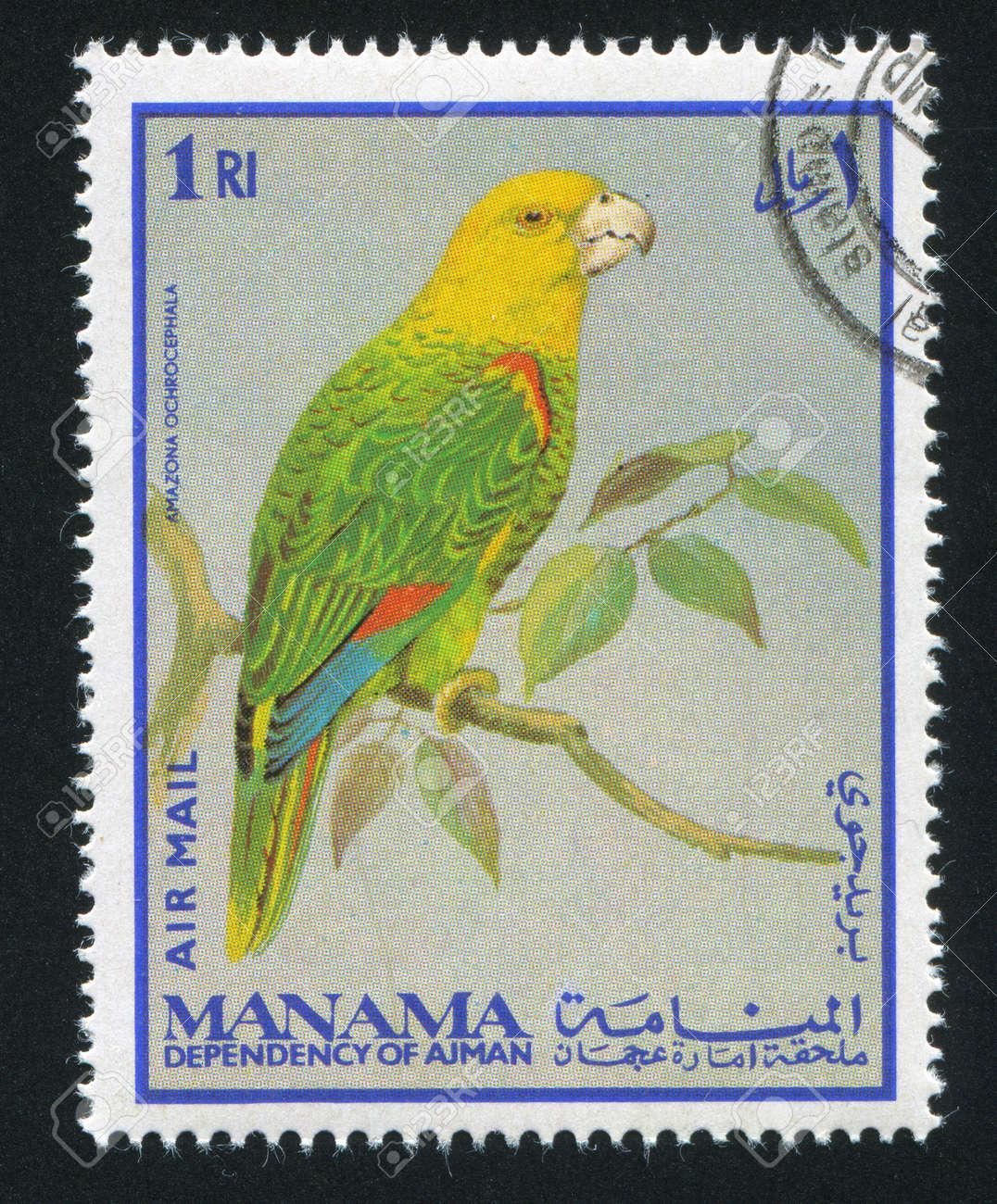 MANAMA - CIRCA 1976: stamp printed by Manama, shows Yellow-crowned Amazon Parrot, circa 1976 Stock Photo - 16745435