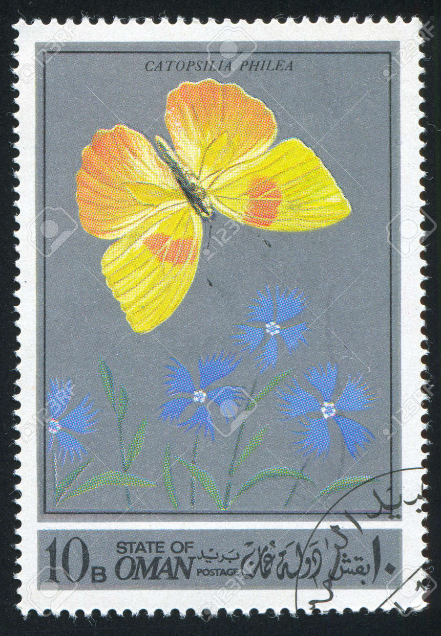 OMAN - CIRCA 1972: stamp printed by Oman, shows a Butterfly, circa 1972 Stock Photo - 17145248