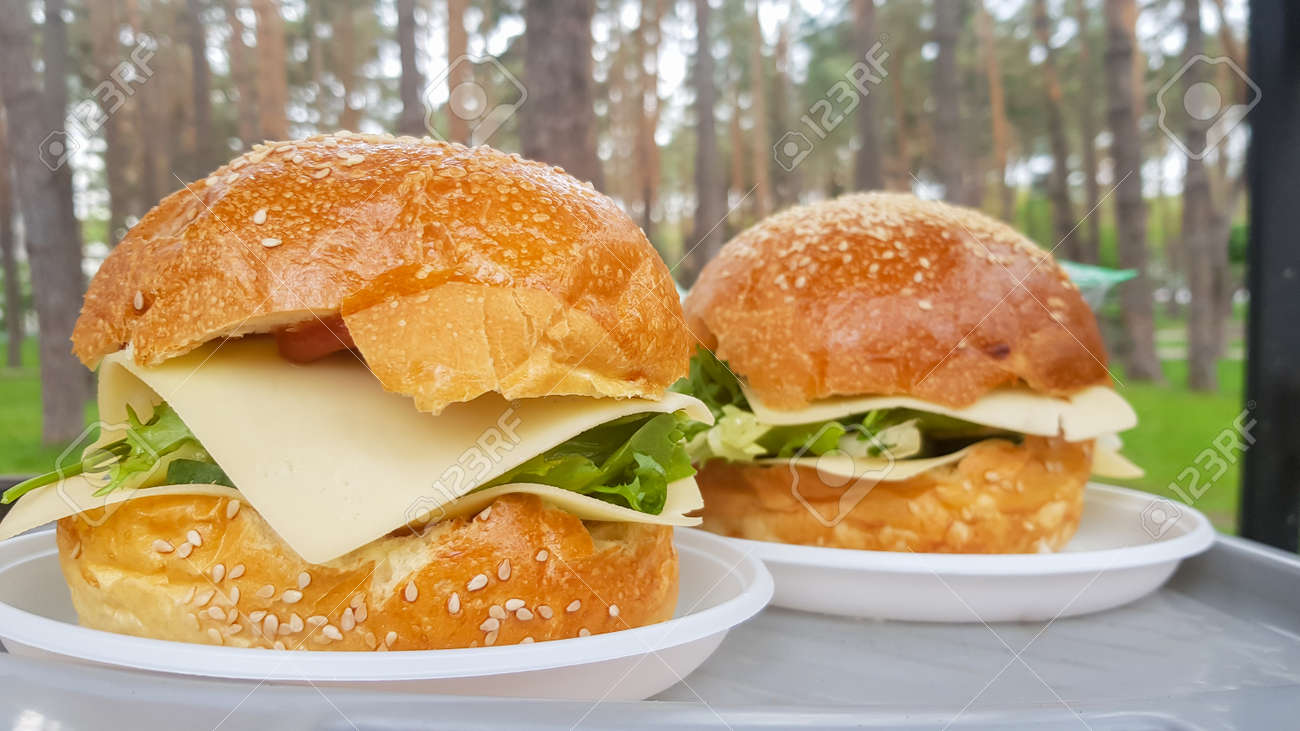 Close-up of two large DIY hamburgers in the park on a barbecue, rest and cooking on a picnic in the summer, food, delicious, bright colors. Unhealthy food concept. Fast food. Flat lay - 173026605