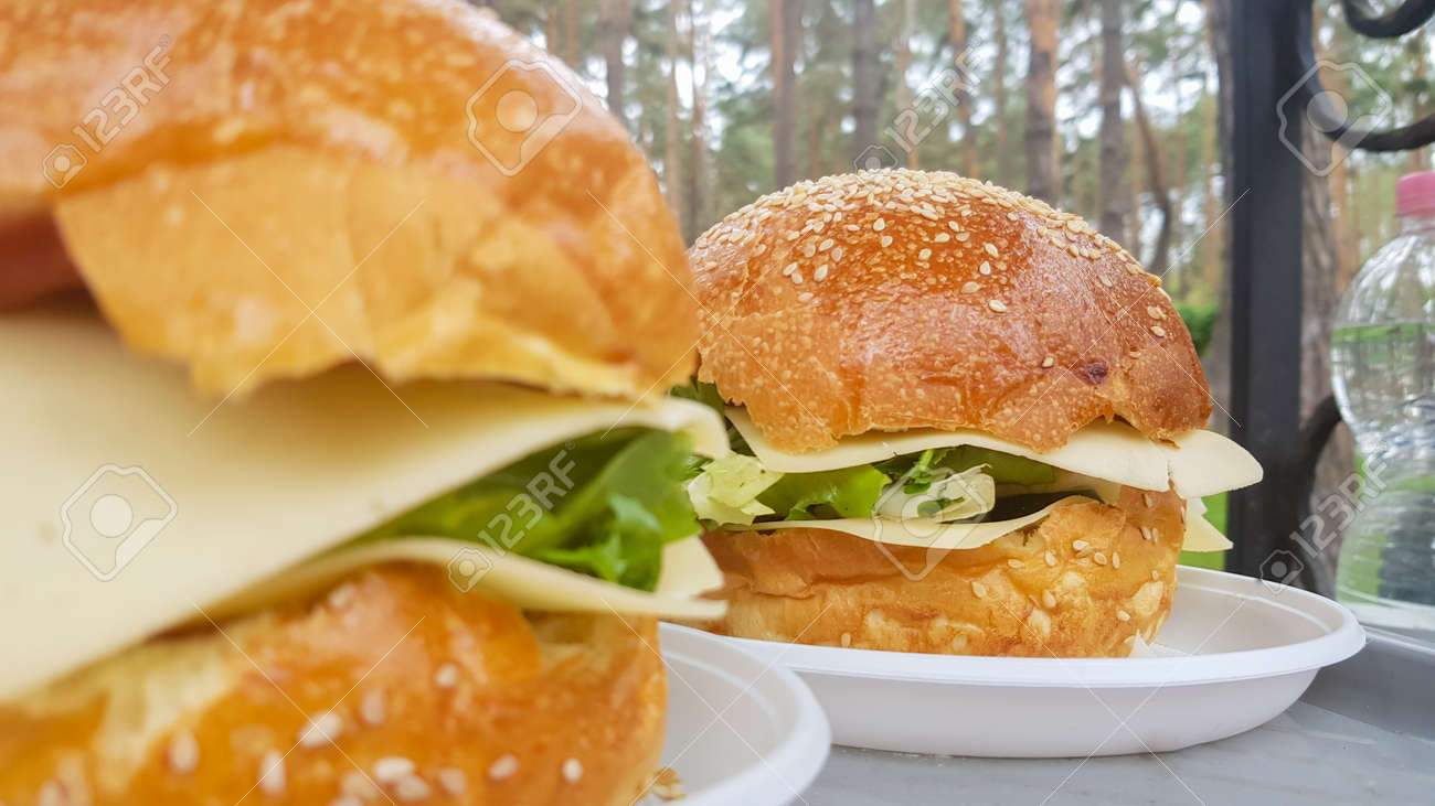 Close-up of two large DIY hamburgers in the park on a barbecue, rest and cooking on a picnic in the summer, food, delicious, bright colors. Unhealthy food concept. Fast food. Flat lay - 173026238