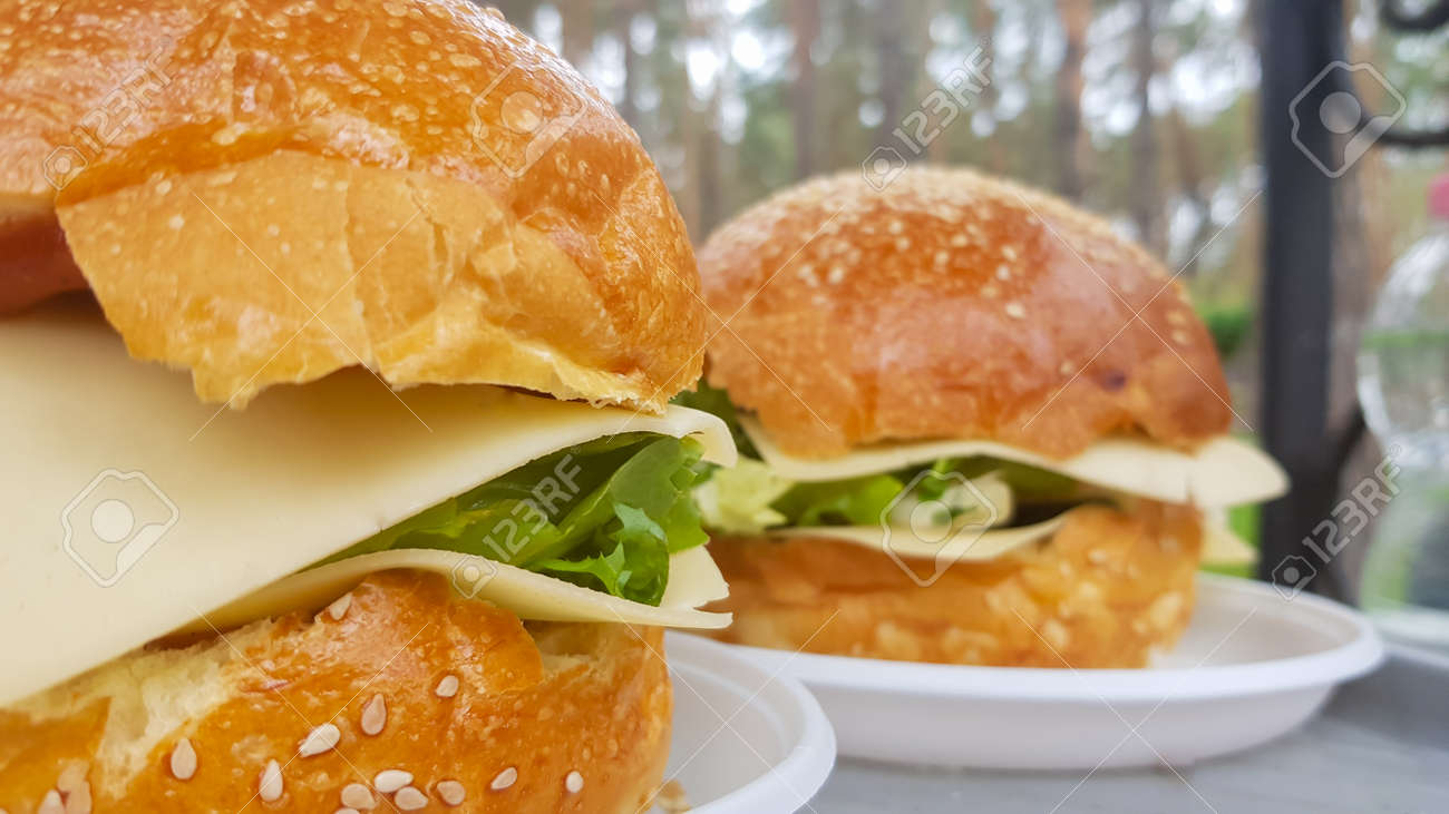 Close-up of two large DIY hamburgers in the park on a barbecue, rest and cooking on a picnic in the summer, food, delicious, bright colors. Unhealthy food concept. Fast food. Flat lay - 173026284
