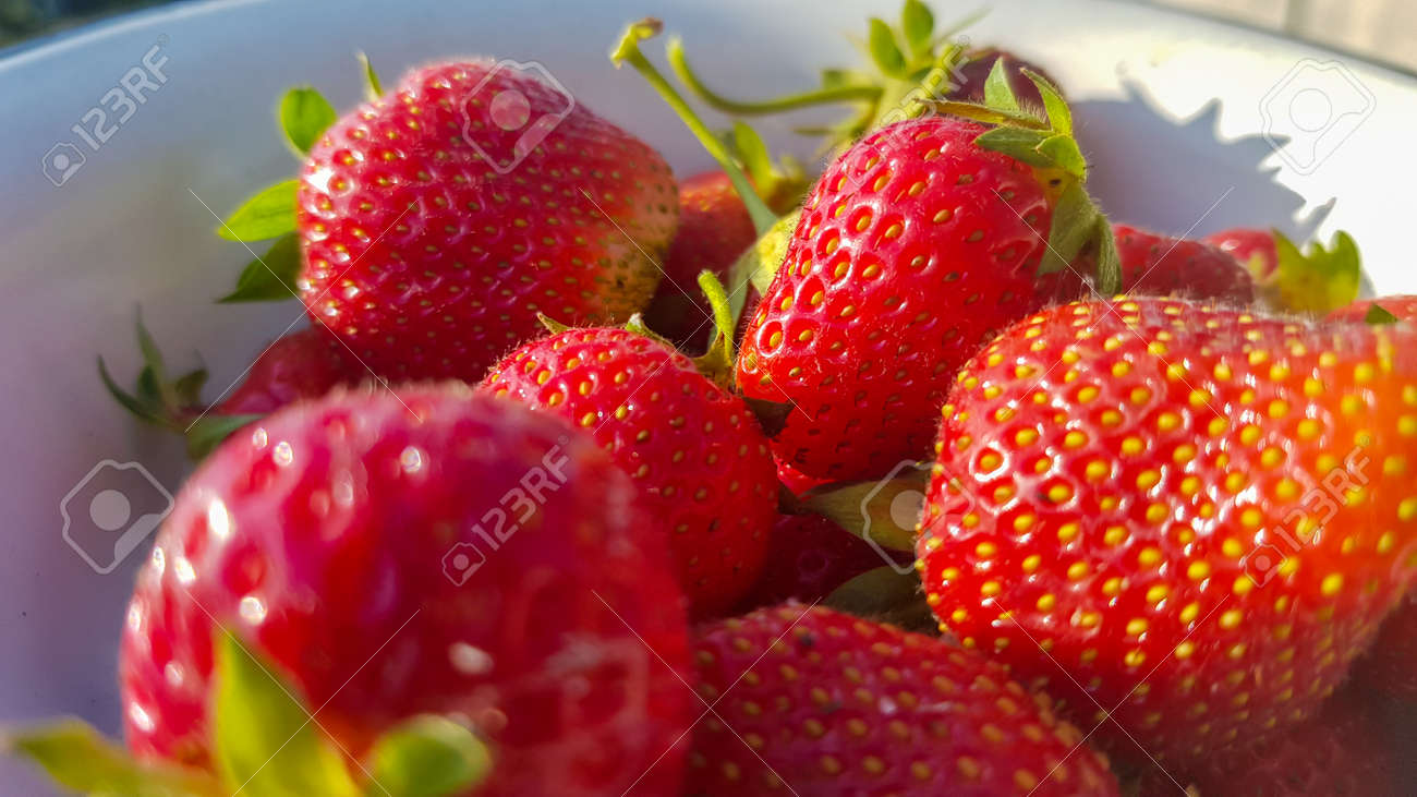 Fresh juicy ripe tasty organic strawberries in an old metal bowl outdoors on a sunny summer day. Strawberry red fresh berries and sweet juicy fruit - 173026379