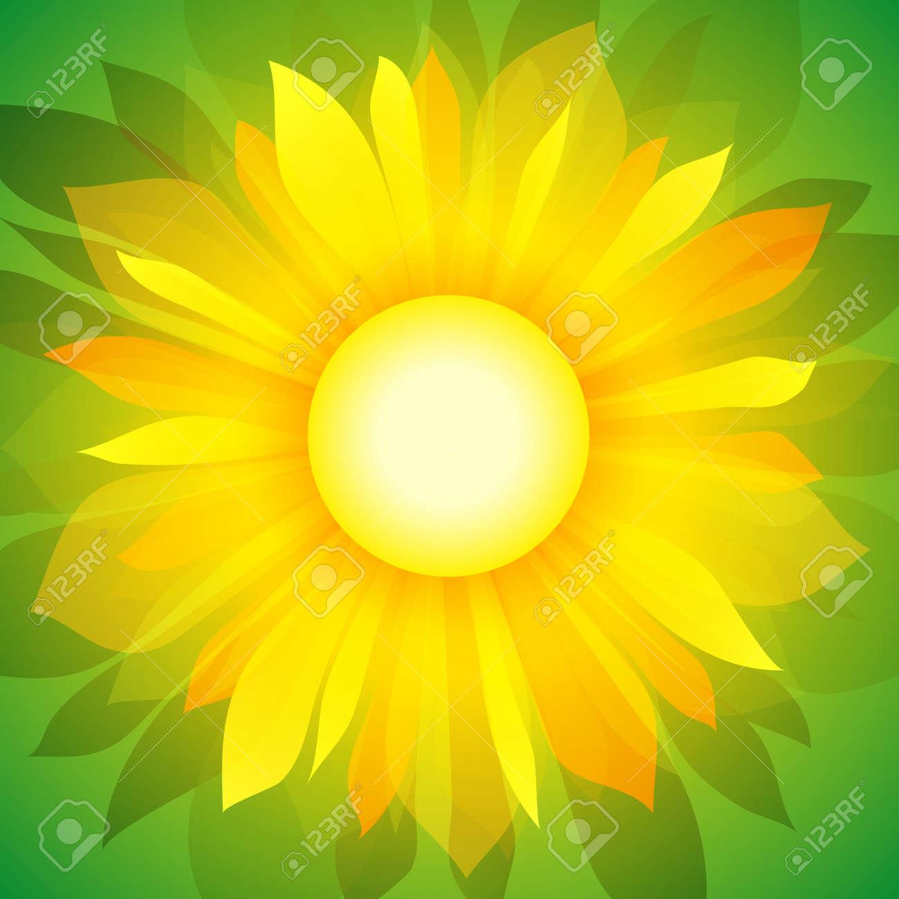 Sunflower on green background. Stock Vector - 10927933