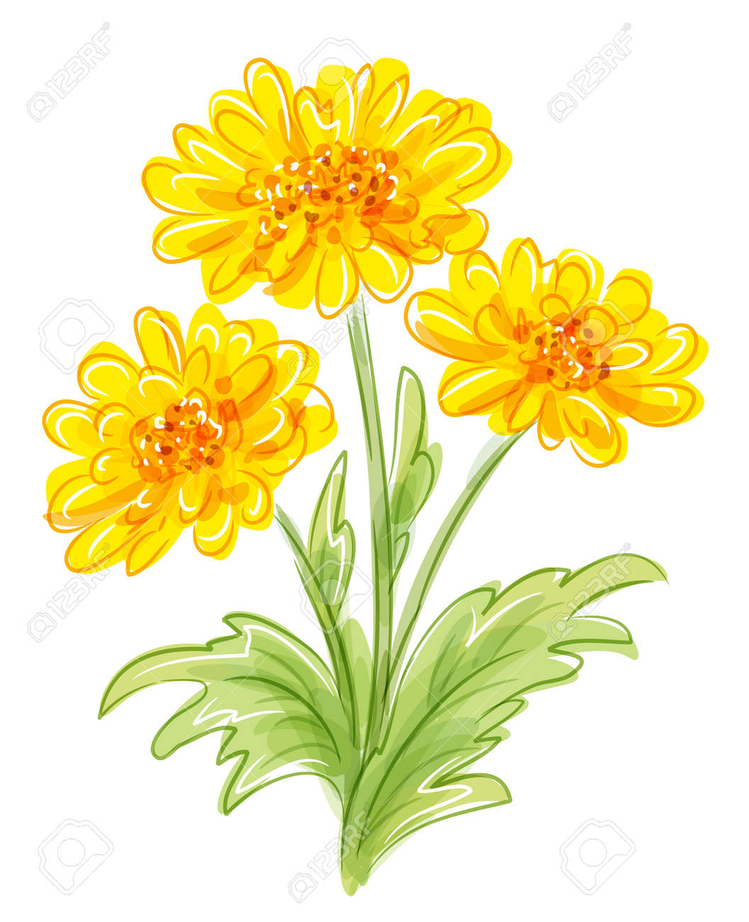 Vector drawing of yellow flowers bunch royalty free cliparts vector vector drawing of yellow flowers bunch mightylinksfo