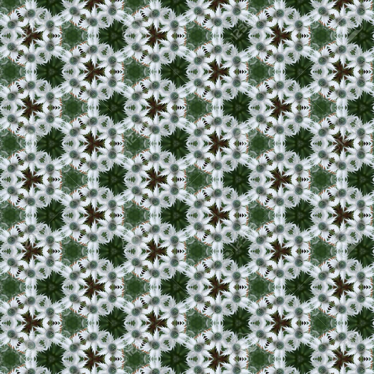 Green and white sea holly or eryngium spiky flowers in a tileabe green and white sea holly or eryngium spiky flowers in a tileabe seamless repeat pattern stock mightylinksfo