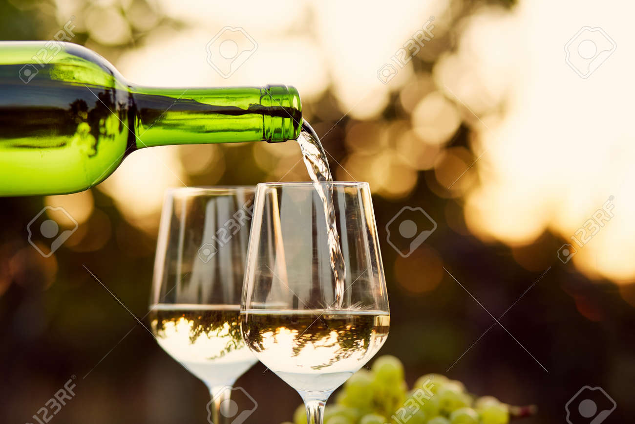 Pouring white wine into glasses in the vineyard, toned - 45249044