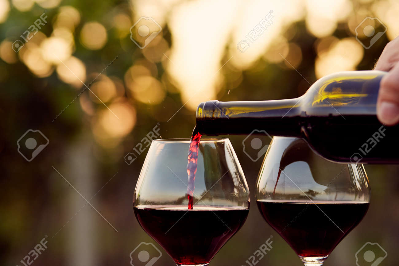 Pouring red wine into glasses in the vineyard, toned Stock Photo - 45249167
