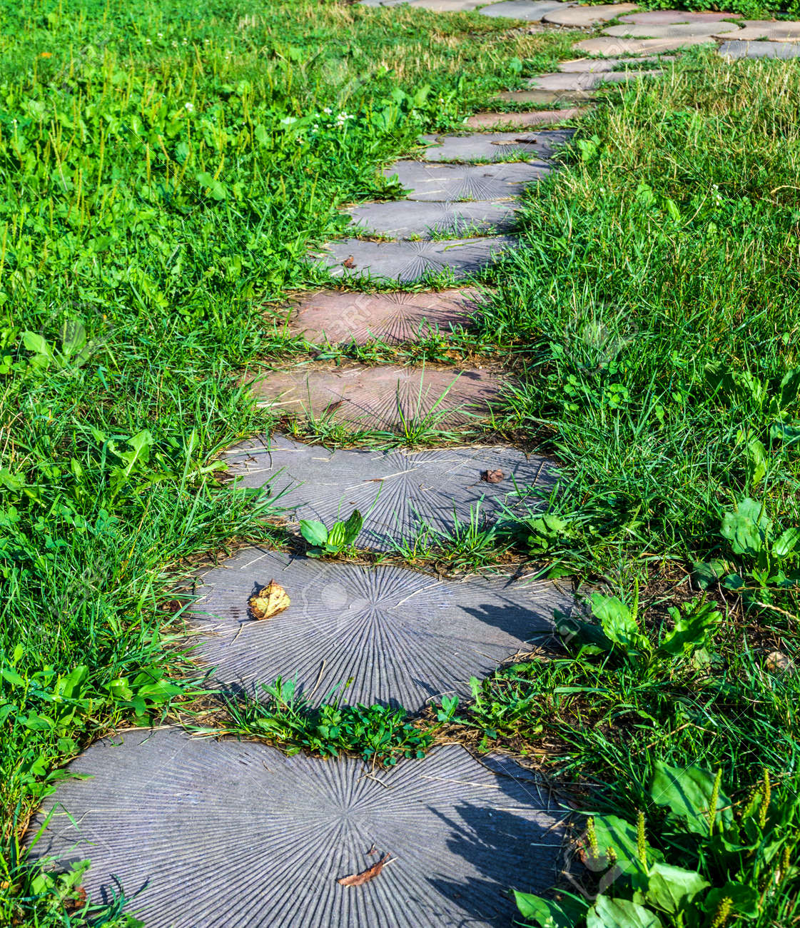 Delightful Stepping Stone Walkway Garden Path. Stones Are Like The Tree. Stock Photo    62084836