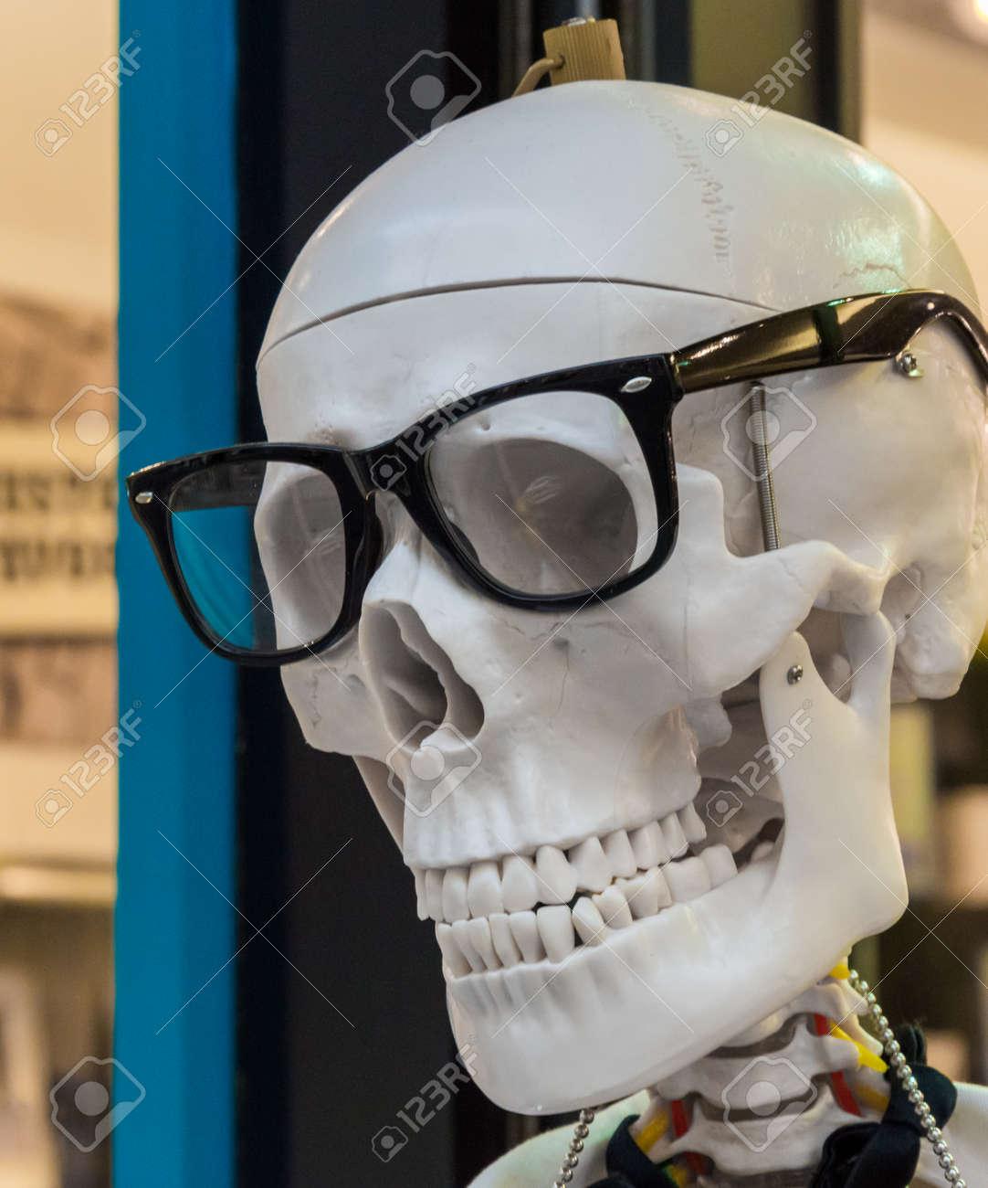 Modelo Del Cráneo Humano En Negro Marco De Los Vidrios Fotos ...