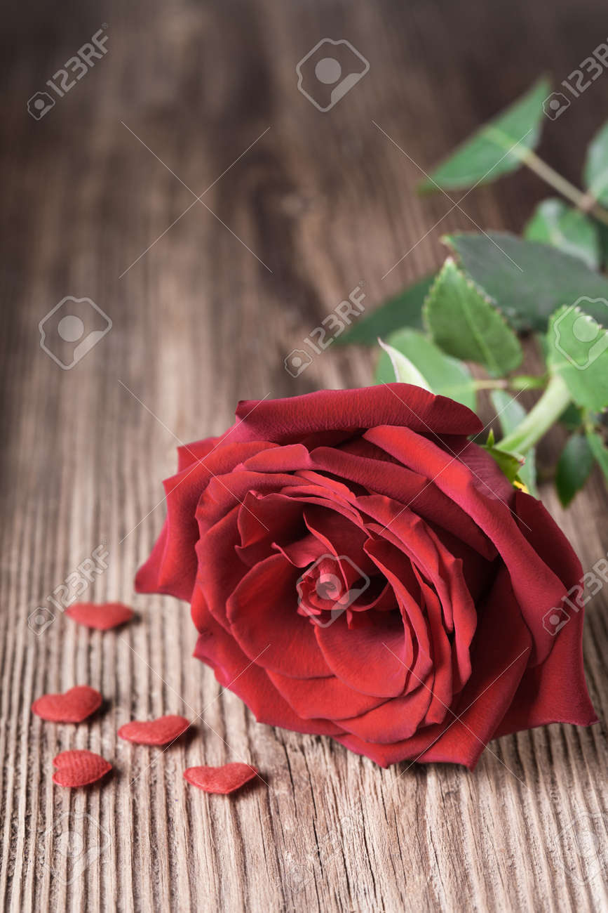 Single Red Rose Witn Small Hearts On Wooden Background With ...