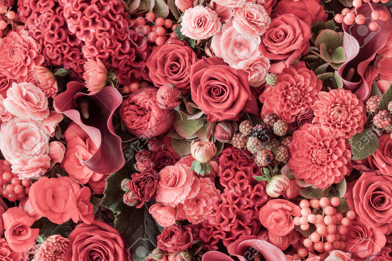 Abstract background of flowers. Close-up - 167571894