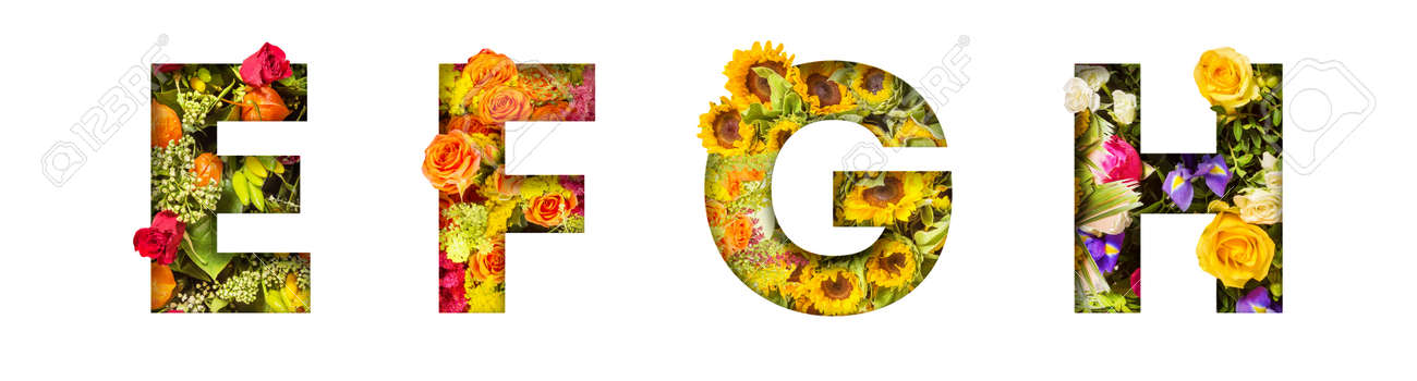 Floral letters. The letters E, F, G, H are made from colorful flower photos. A collection of wonderful flora letters for unique spring decorations and various creation ideas - 169111107
