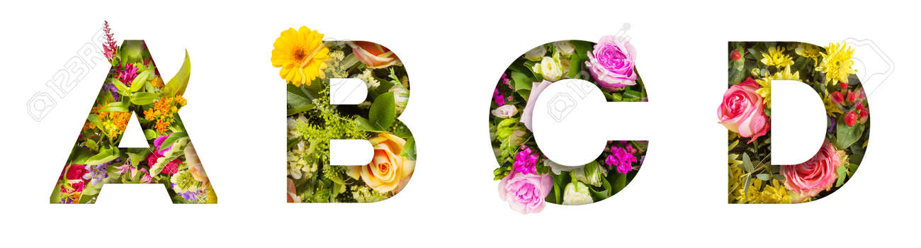 Floral letters. The letters A, B, C, D are made from colorful flower photos. A collection of wonderful flora letters for unique spring decorations and various creation ideas - 169111109