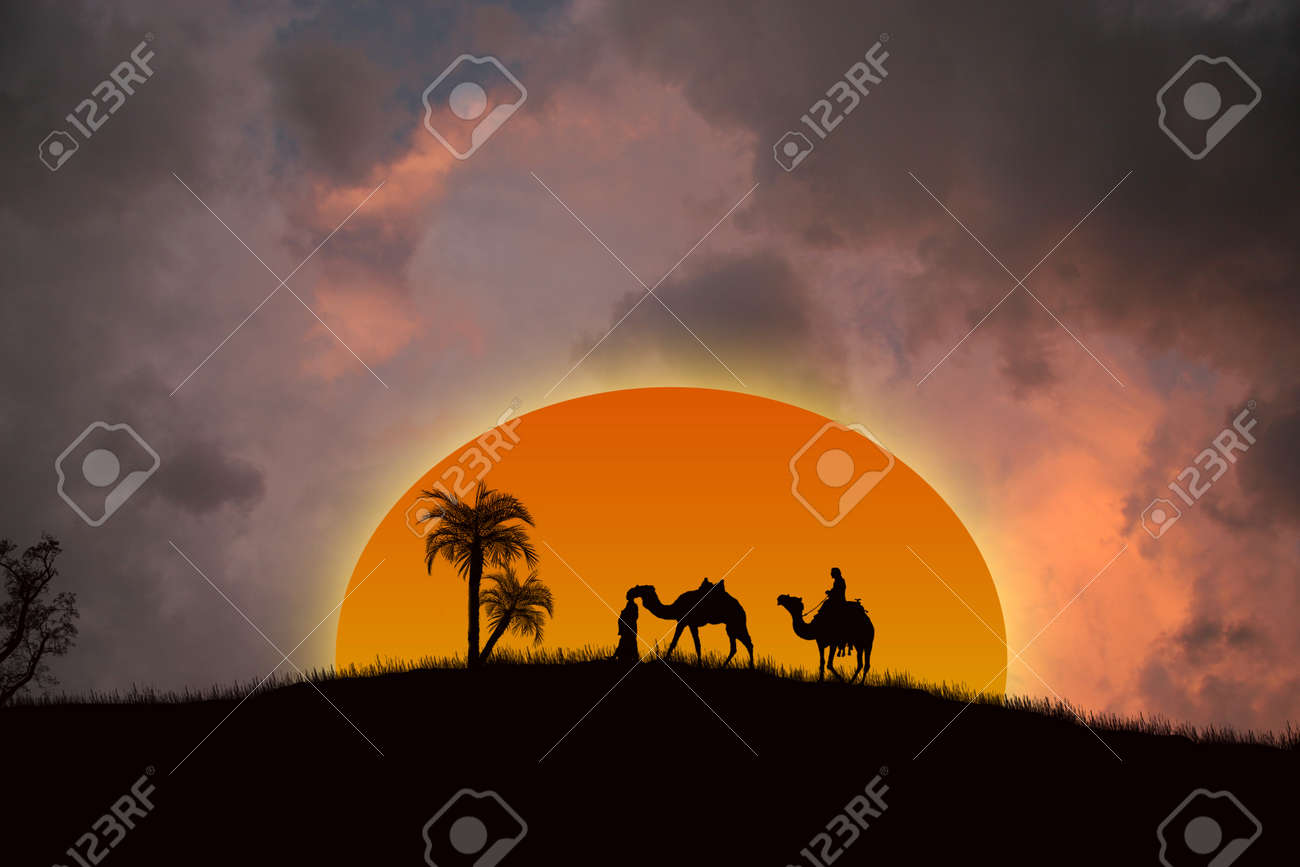 Sunset in the Sahara Desert with Bedouins and palms - 11550769