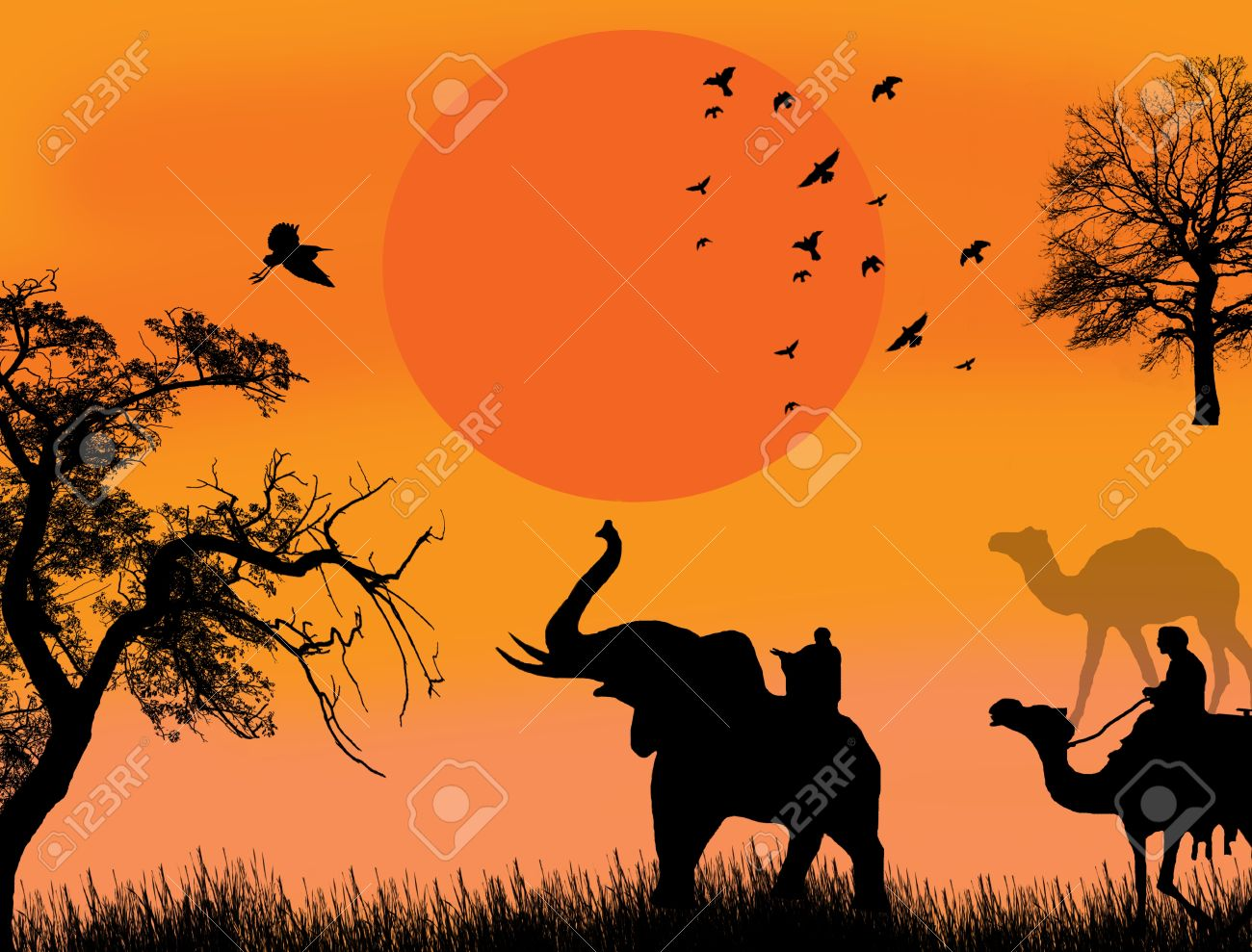 African Safari Theme Illustration With Camels And Elephant On ...