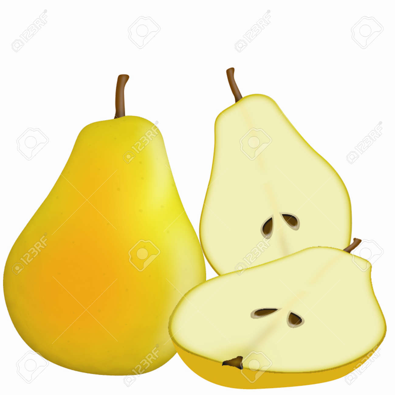illustration of detailed yellow pear on white background Stock Vector - 16762314