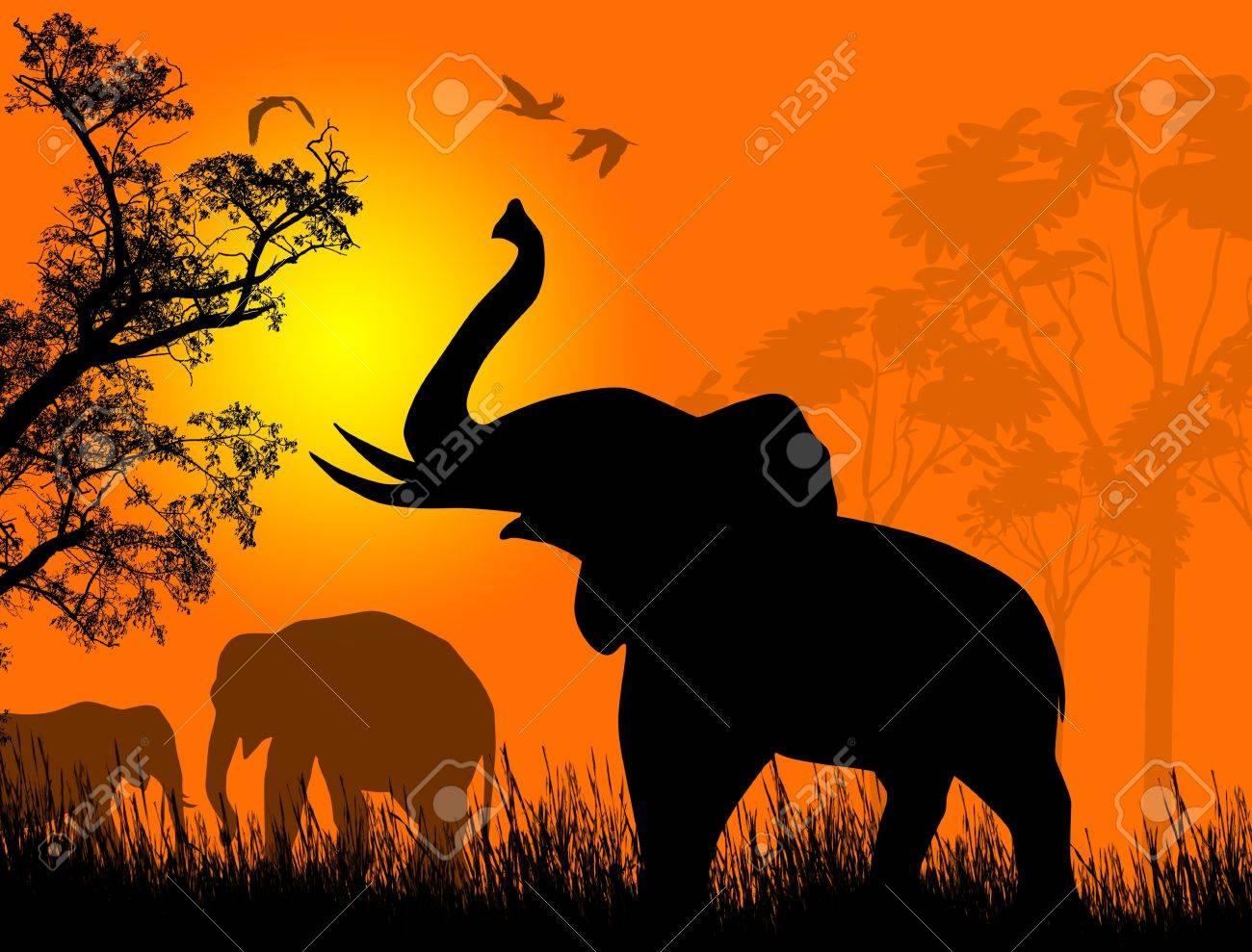 Wild elephants at sunset on beautiful landscape illustration Stock Vector - 17147833