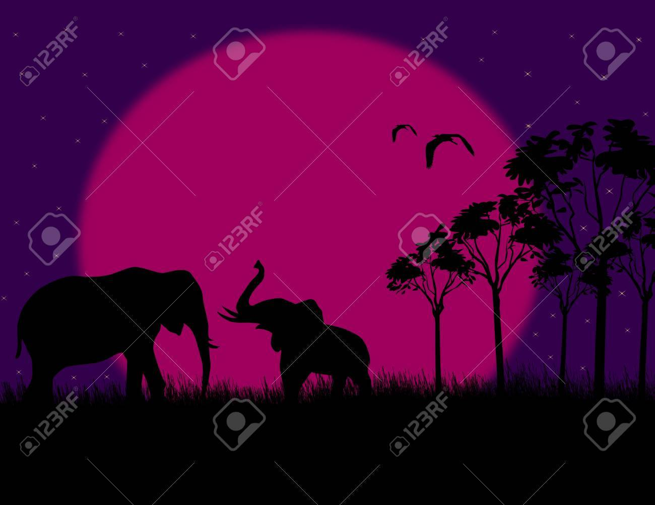 Silhouette illustration of a two elephants on night landscape, illustration Stock Vector - 17590534