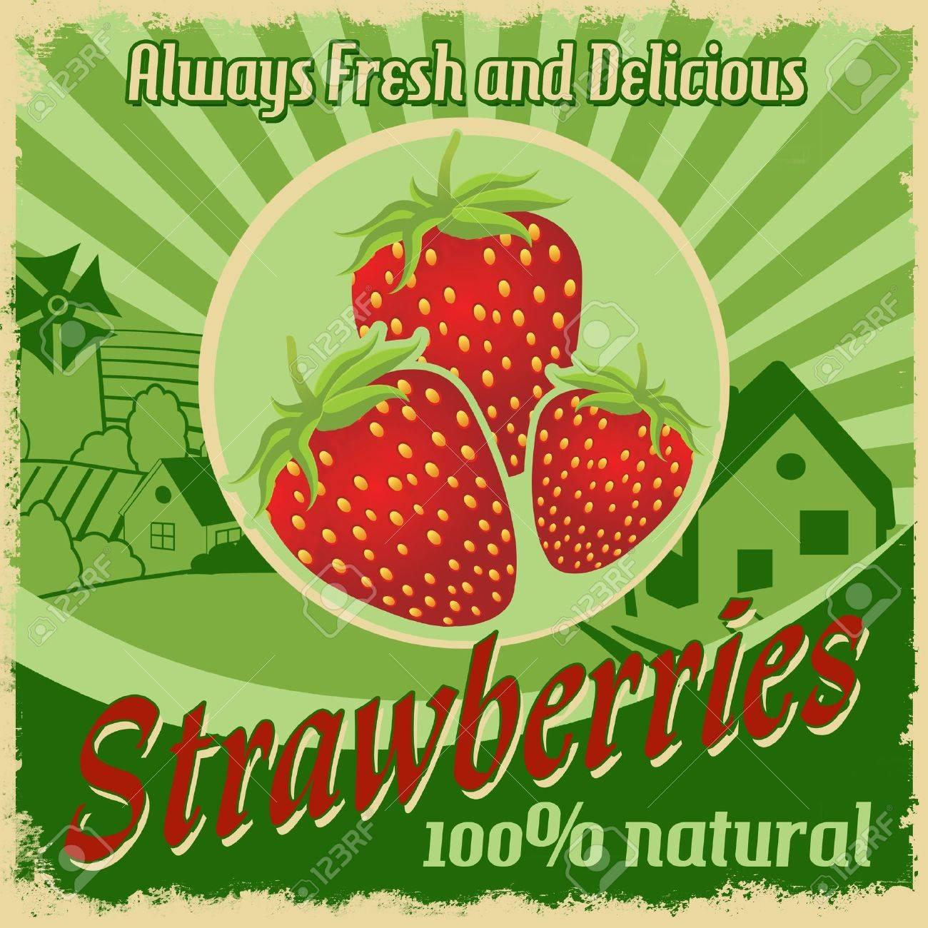 Vintage poster template for strawberries farm, illustration Stock Vector - 20854302