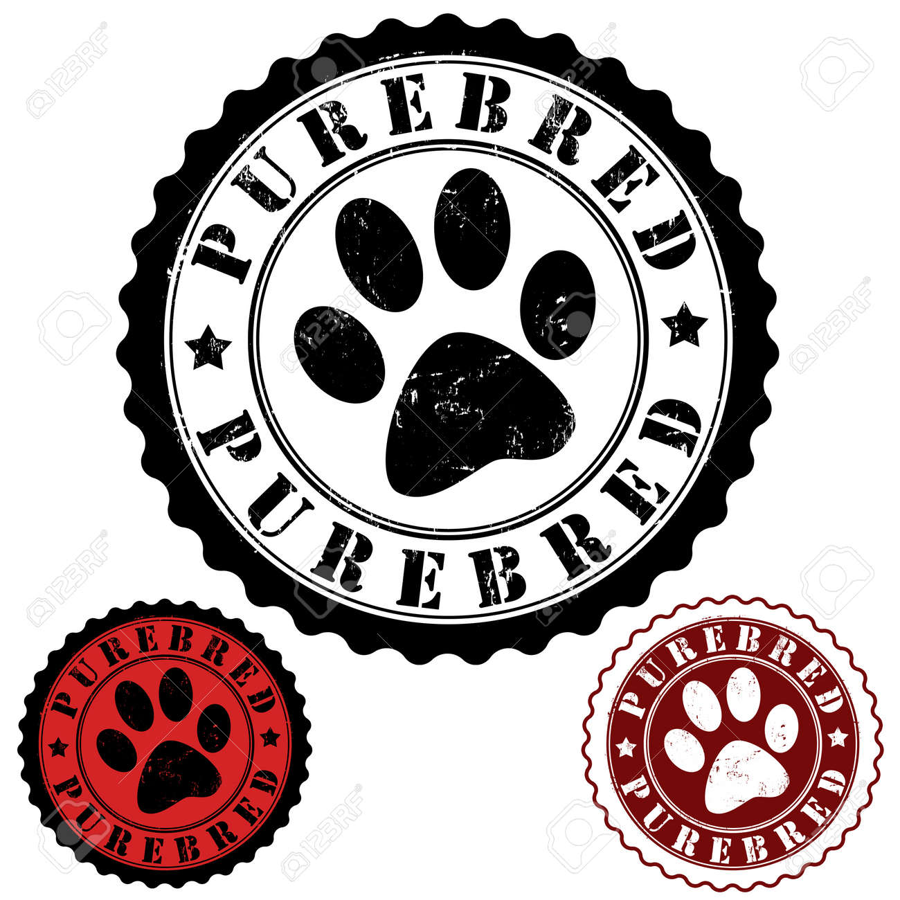 Grunge rubber stamp, with word purebred and animal footprint inside, vector illustration Stock Vector - 21635543