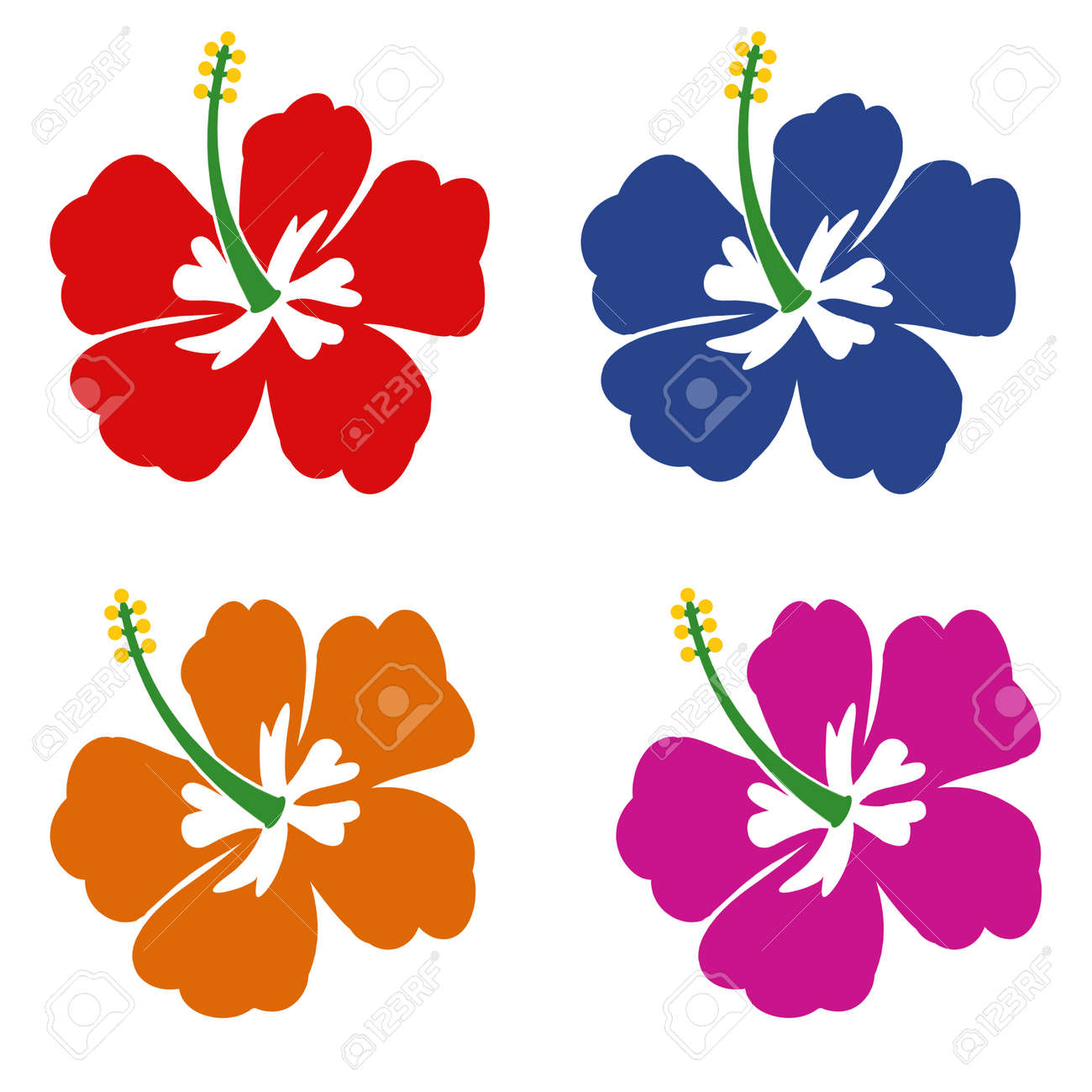 Set of Hibiscus flowers on white background, vector illustration - 30142575