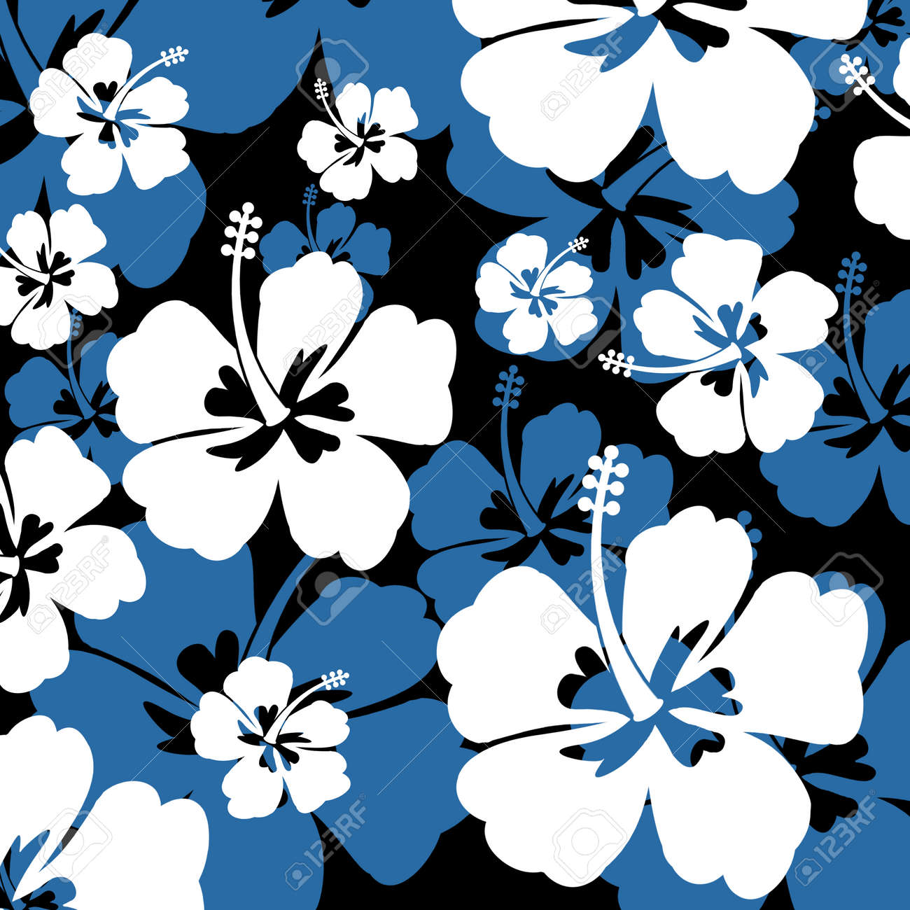 Seamless pattern with white and blue hibiscus flowers on black seamless pattern with white and blue hibiscus flowers on black background vector illustration stock vector dhlflorist Images