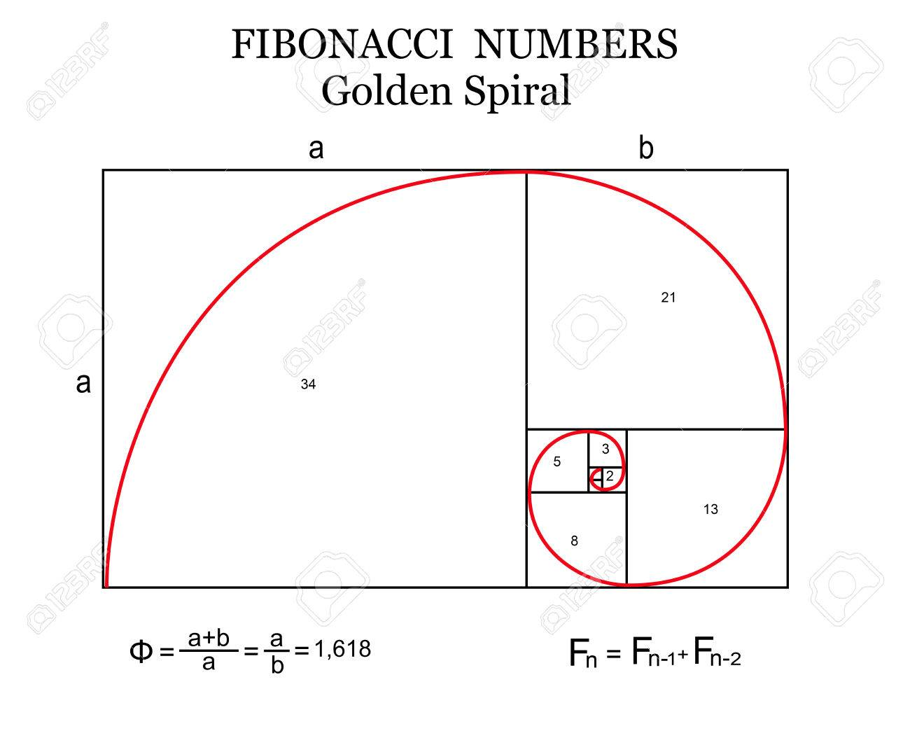 The fibonacci spiral also known as the golden spiral with basic the fibonacci spiral also known as the golden spiral with basic formulas on white publicscrutiny Images