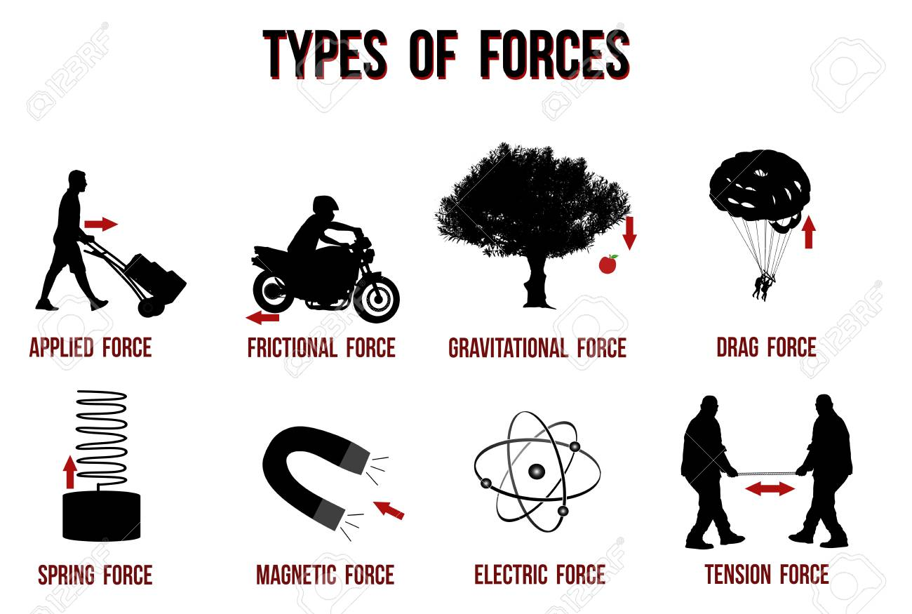Types of forces chart, vector illustration ( for basic education and Schools ) - 124853433
