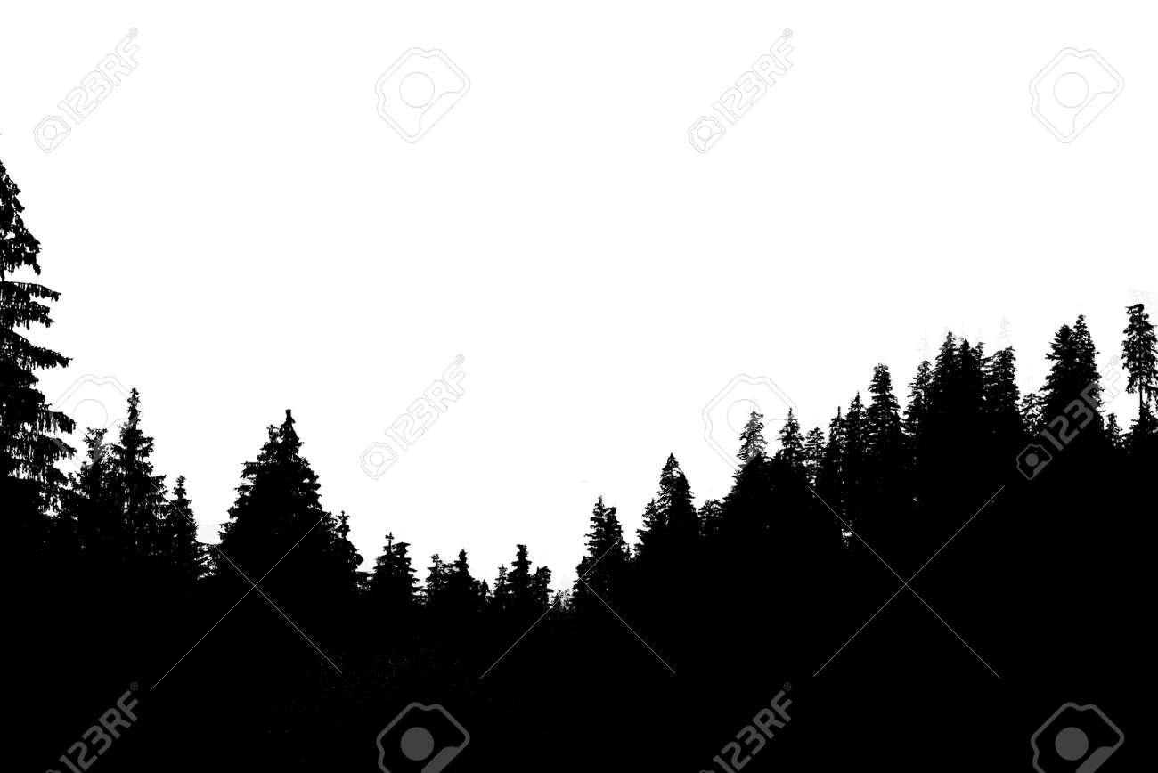 Misty mountain landscape - 120981018