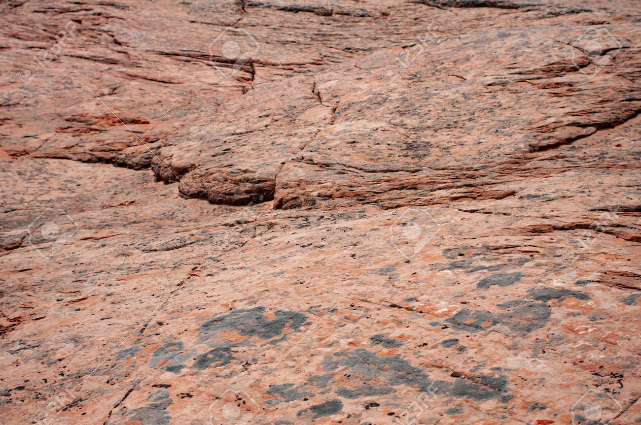 Glen Canyon  Arizona, traces of dinosaurs on the Navajo land