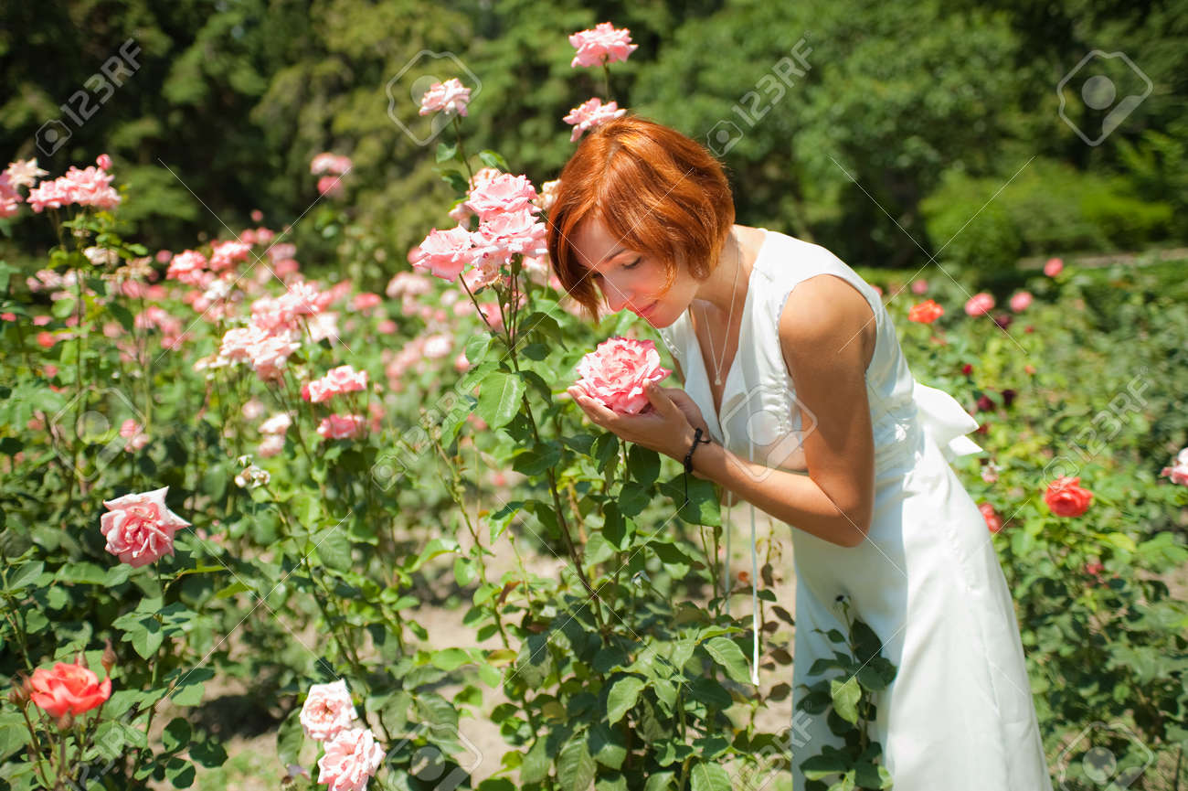 Beautiful young woman in a garden of roses at sunny summer day Stock Photo - 9253413