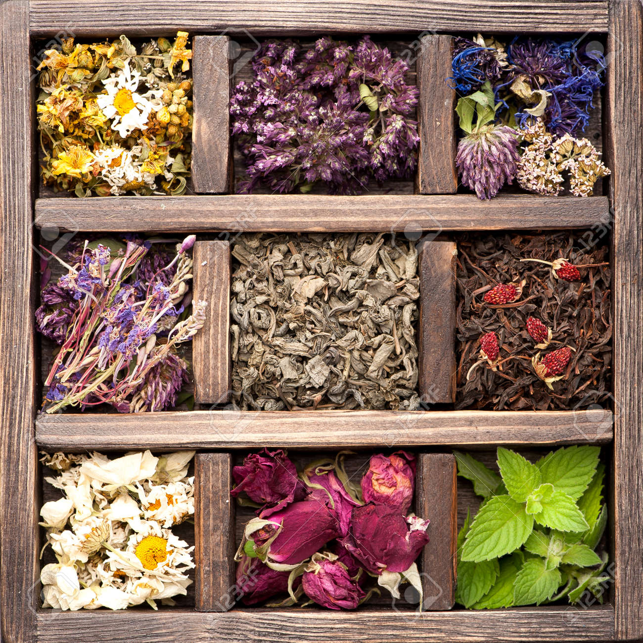 Dried Herbs and flowers in vintage box. Collage. - 32489578