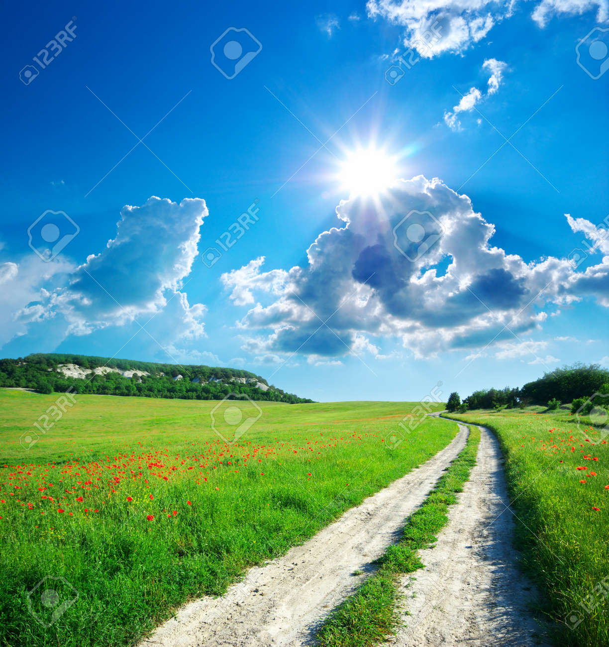 Lane in meadow and deep blue sky. Nature design. - 10998552