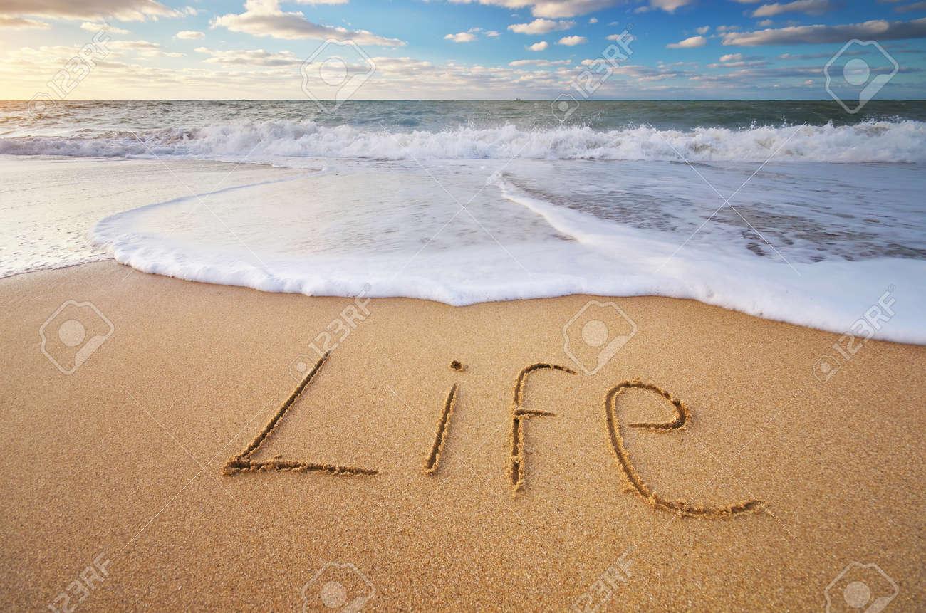 Life word on the sea sand. Conceptual nature design. - 55947302
