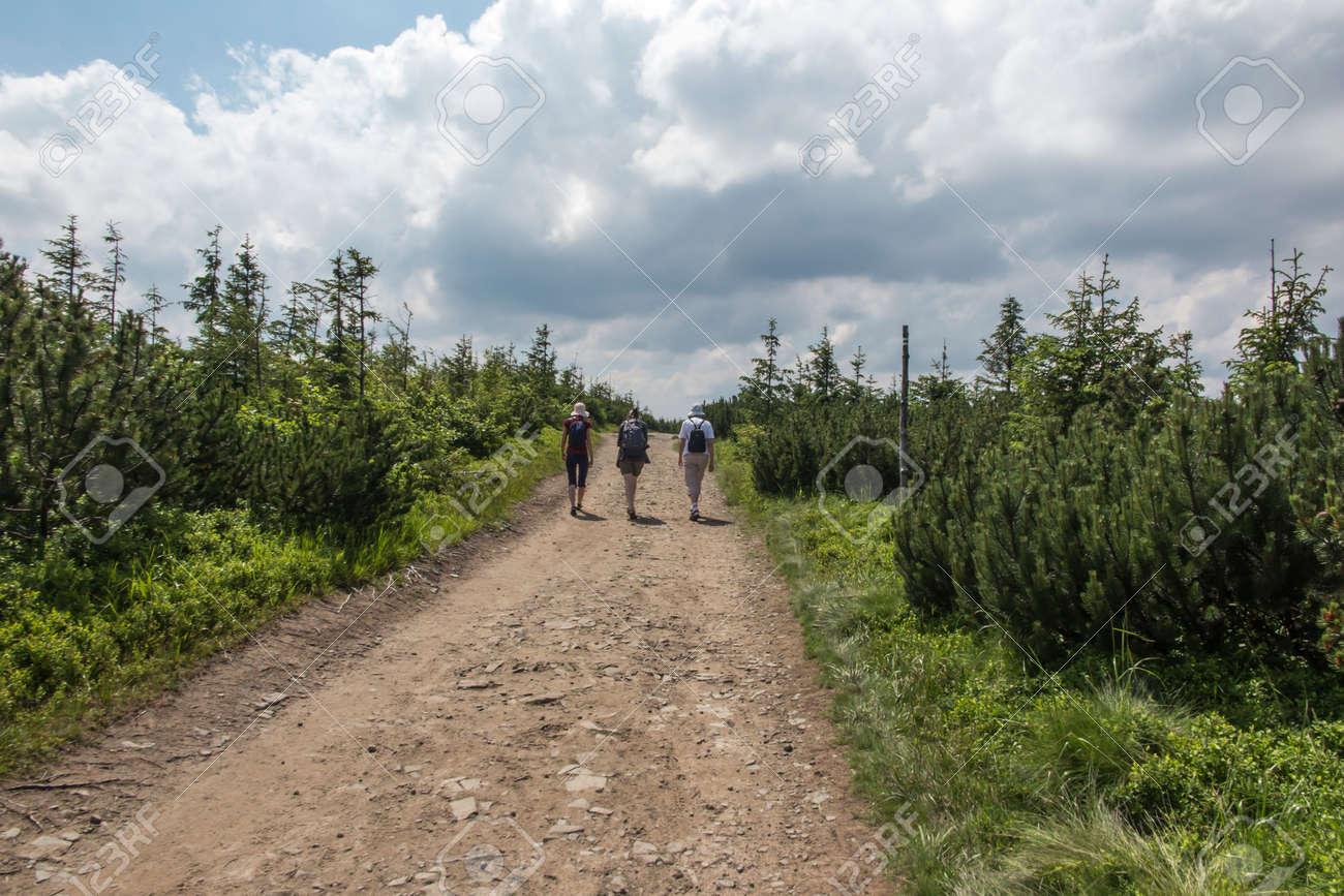 Skrzyczne, Poland, July 04, 2020: Hiking along a mountain trail in the Silesian Beskids (Poland) near the Skrzyczne peak - 158013573