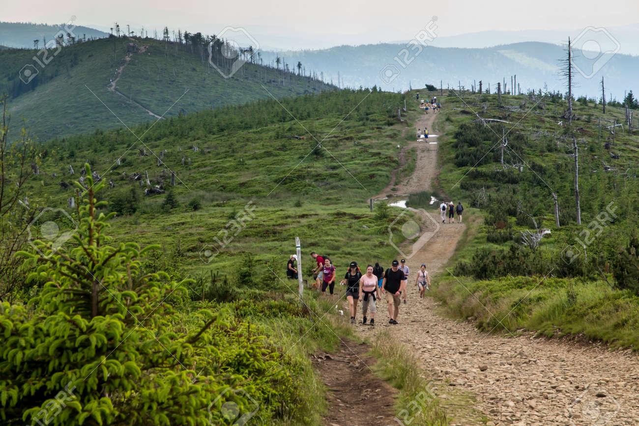 Skrzyczne, Poland, July 04, 2020: Hiking along a mountain trail in the Silesian Beskids (Poland) near the Skrzyczne peak - 158013575