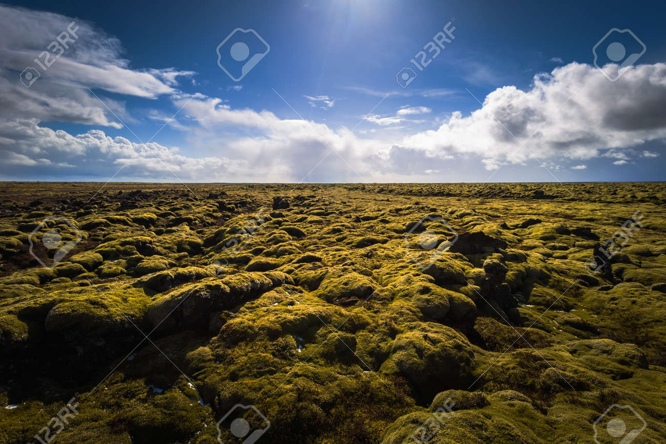 icelandic wilderness may 05 2018 wild volcanic landscape stock