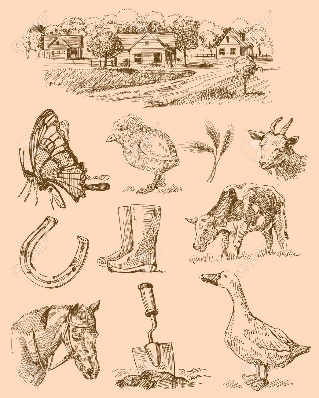 farm collection-handmade drawing Stock Vector - 12479693