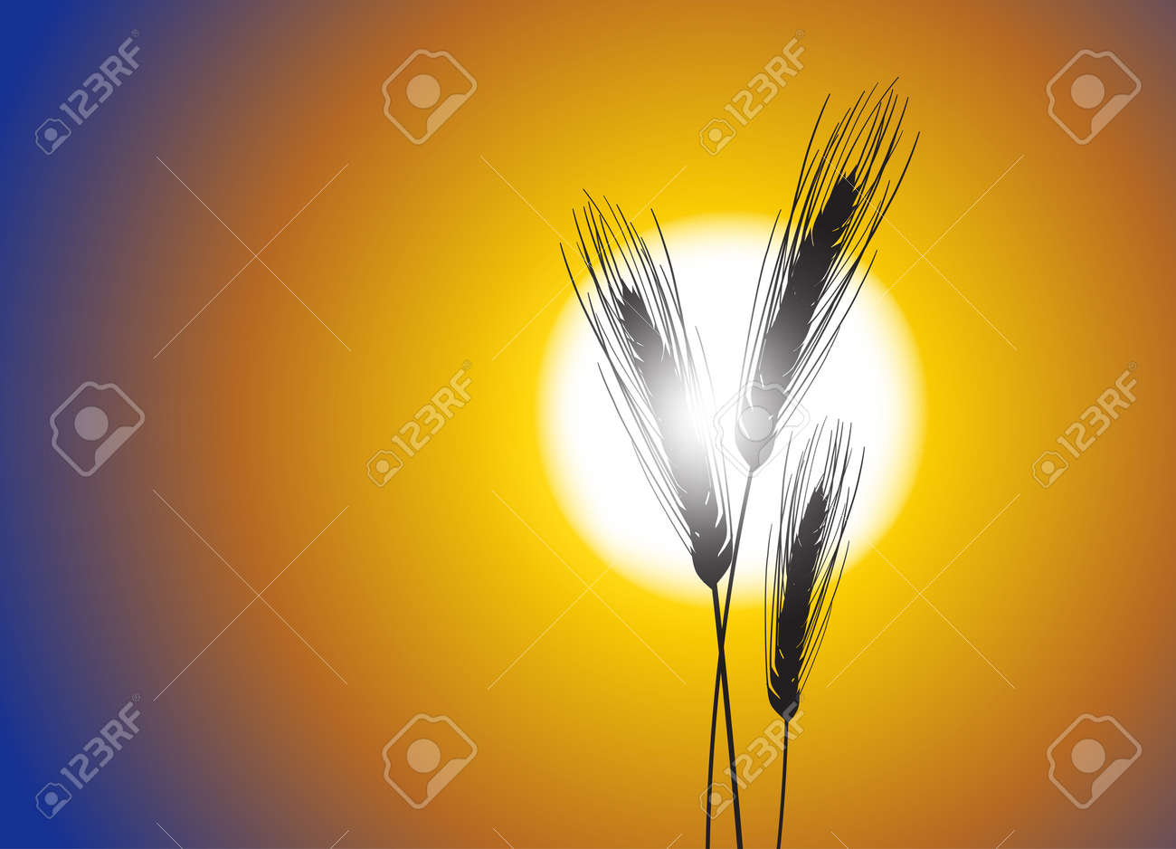 Wheat on a great summer sunset background Stock Vector - 13986698