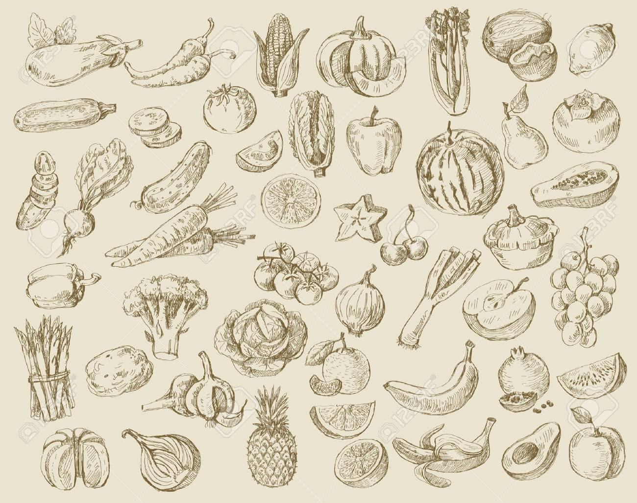 vector set of different hand drawn fruits and vegetables - 32567595